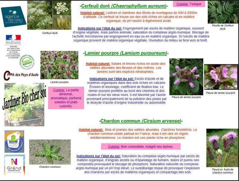 Les plantes bio indicatrices 7
