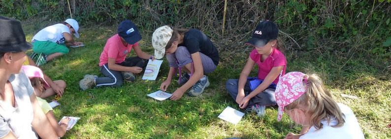 Centres de loisirs en classe découverte dans un jardin permaculture en Bourgogne