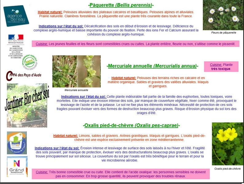 Les plantes bio indicatrices 8