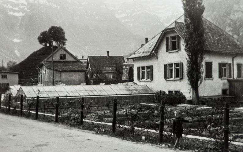 Gärtnerei Keller mit Landstrasse, von Nordosten