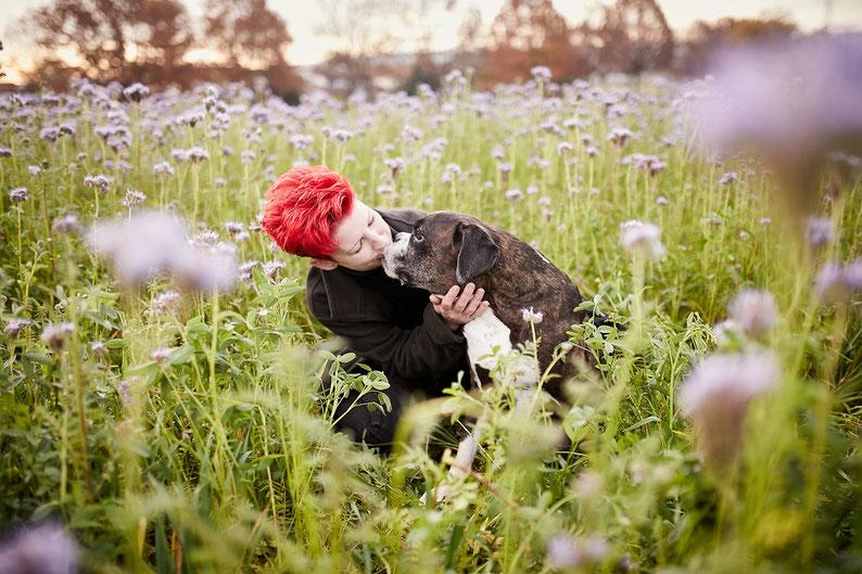 Tierfotograf Hundefotograf Fotograf Fotostudio Hund Welpe Welpen Hunde Fotoshooting Rheinfelden Lörrach Basel Freiburg im Breisgau Bern Bad Säckingen Zürich Hundefotografie Hundeshooting Hundefotoshooting American Pocket Bully Maglio Barbier