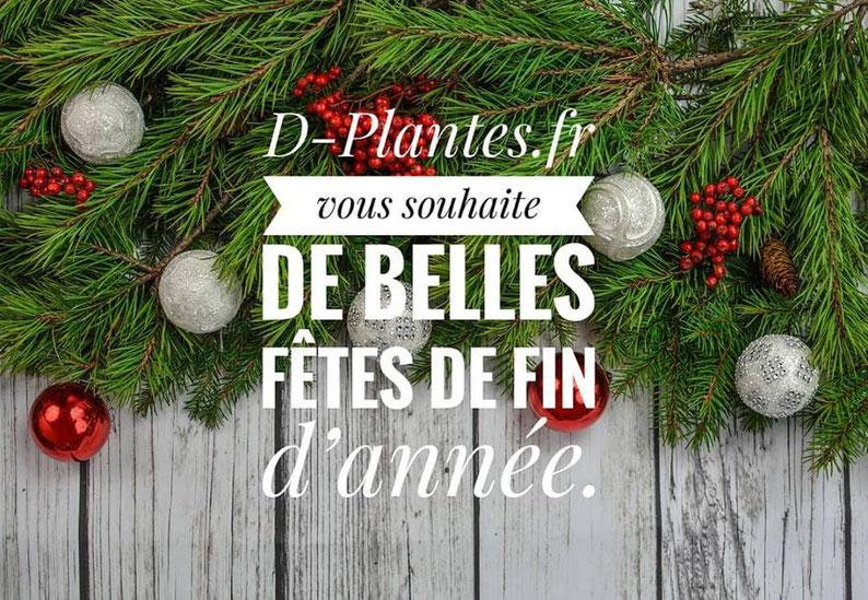 Paysagiste d'intérieur à Paris: location de plantes pour bureaux d'entreprises