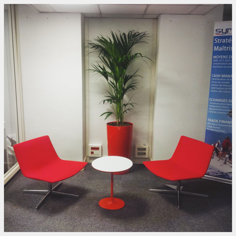 Paysagiste d'intérieur et location de plantes à Paris: Décoration végétale des bureaux de notre client