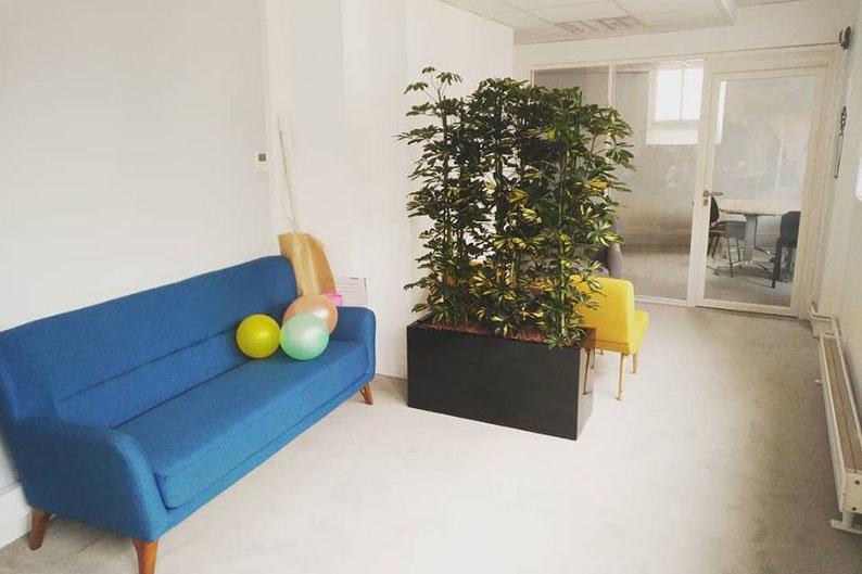 location de plantes d'intérieur pour les bureaux de votre entreprise à Paris