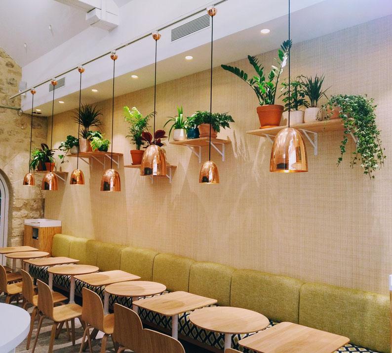 Ce restaurant nous confie l'entretien de ses plantes d'intérieur. #contrat d'entretien