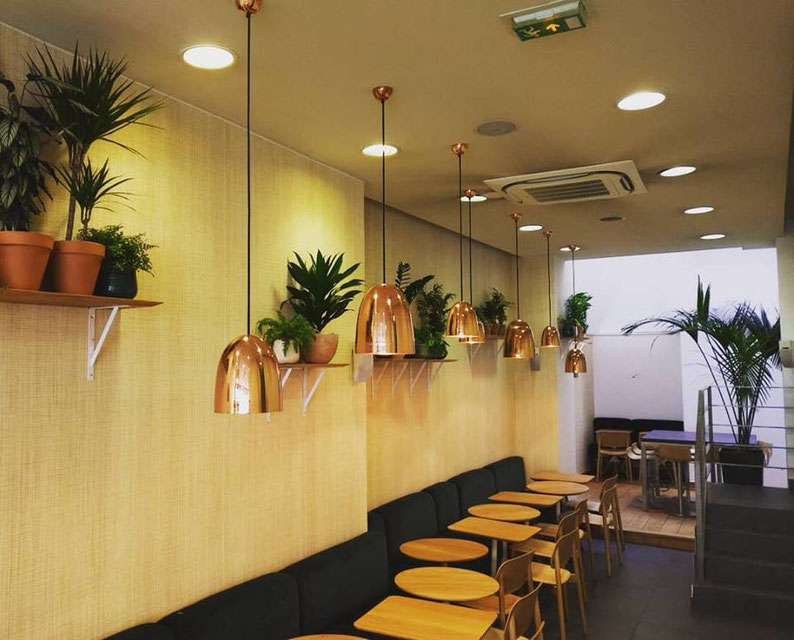 Entretien de plantes d'intérieur pour vos bureaux à Paris