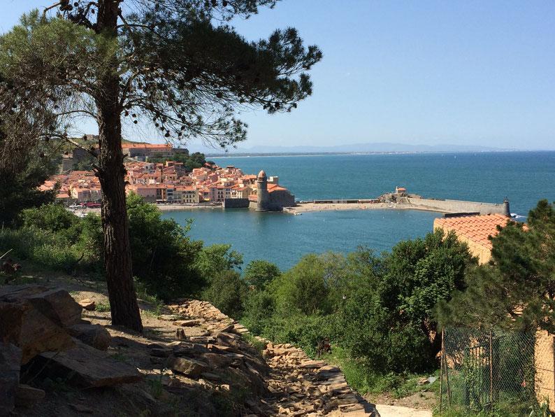 vue sur la petite ville de Collioure et sur la méditerranée  en Occitanie - organisation de voyage et guide patrimoine gratuit