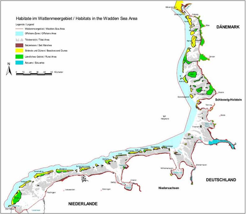 waddensea nature habitats