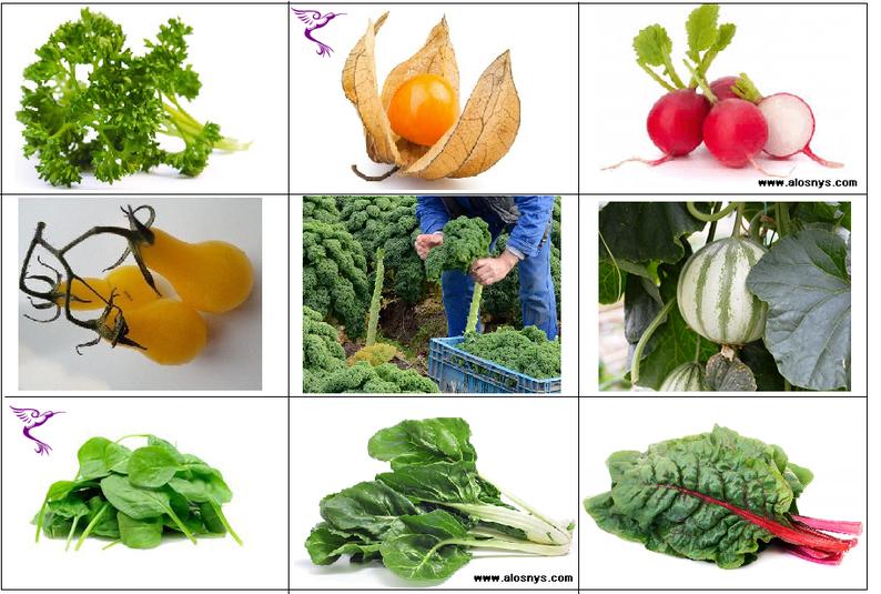 Jeu pédagogique : Fruits et légumes à faire découvrir à vos enfants (7/8)