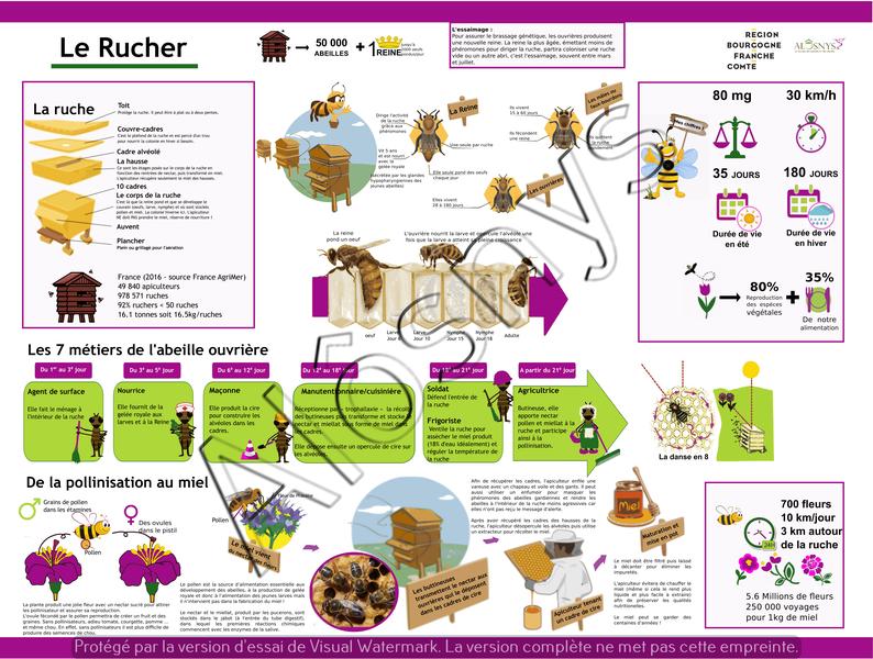 Panneau pédagogique du rucher au jardin d'Alôsnys