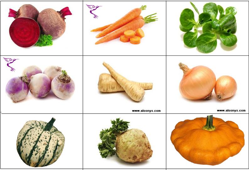 Jeu pédagogique : Fruits et légumes à faire découvrir à vos enfants (5/8)