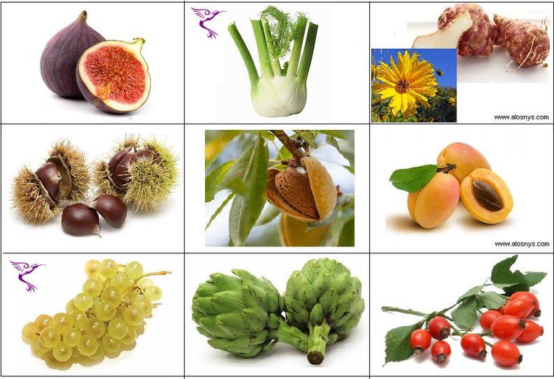 Jeu pédagogique : Fruit et légume à faire découvrir à vos enfants