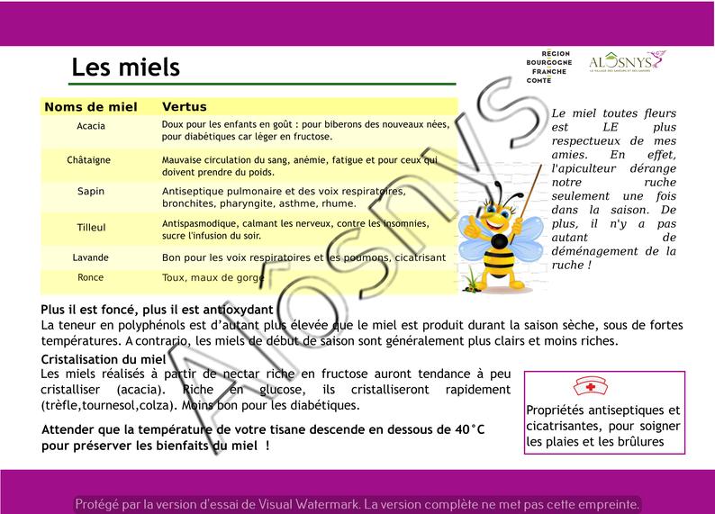 Panneau pédagogique : les miels