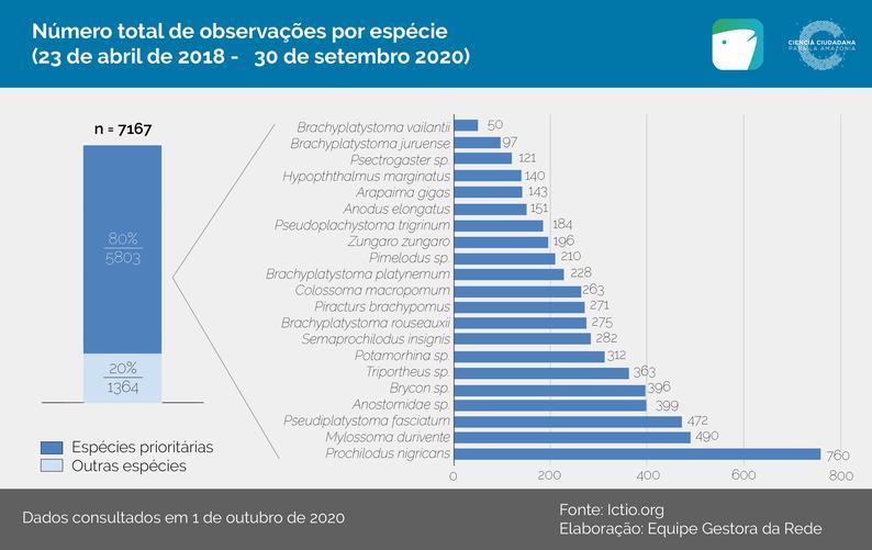 Gráfico 1 - Número total de observações por espécies (23 de abril 2018 - 30 de setembro de 2020).
