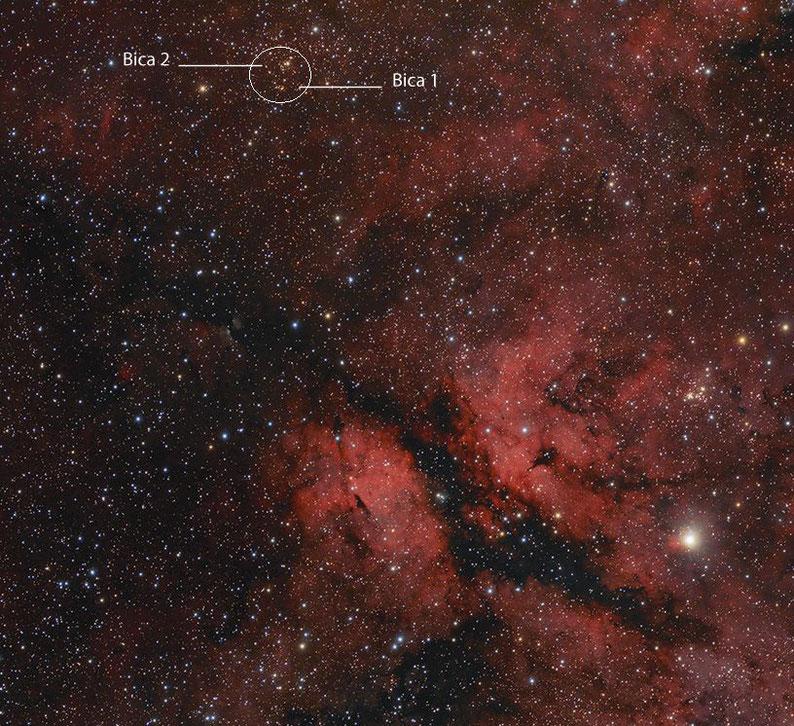 Cygnus OB1 Assoziation
