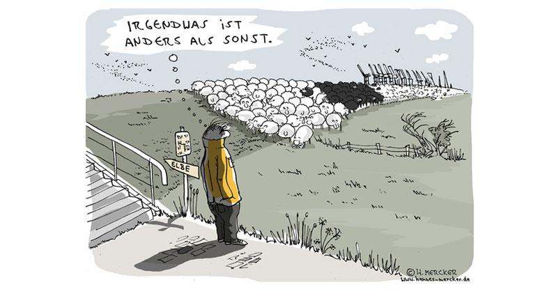 Cartoon von H. Mercker zu den Ausschreitungen rund um den G20-Gipfel in Hamburg.