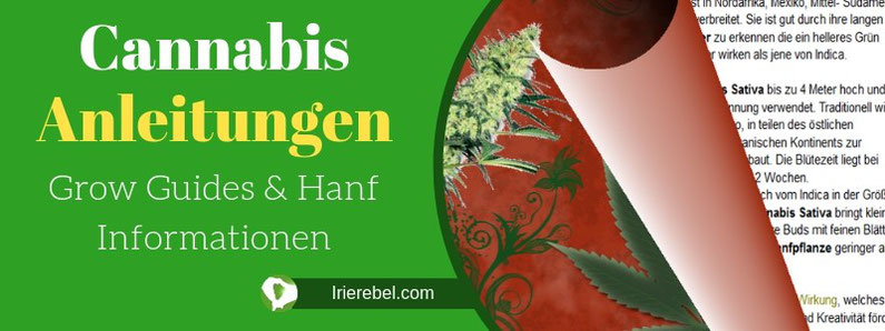 Cannabis Anleitungen , Grow Guides & Hanf Informationen