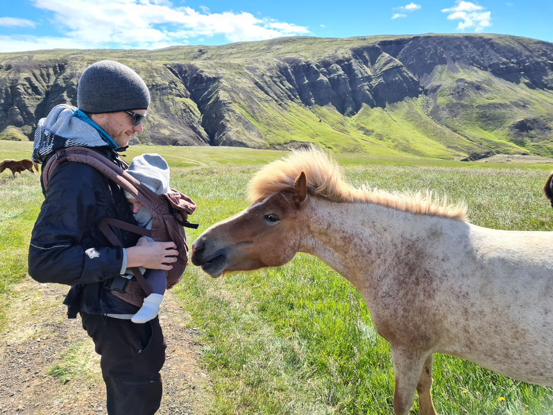 13 Days in Iceland - Helgufoss