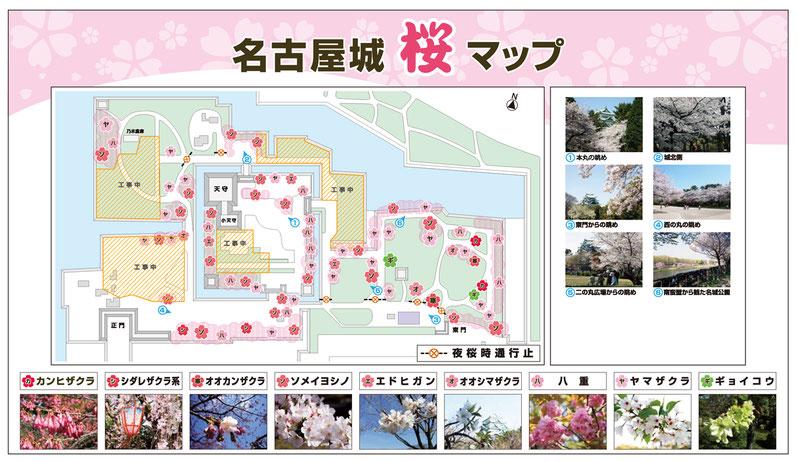 名古屋城_桜マップ