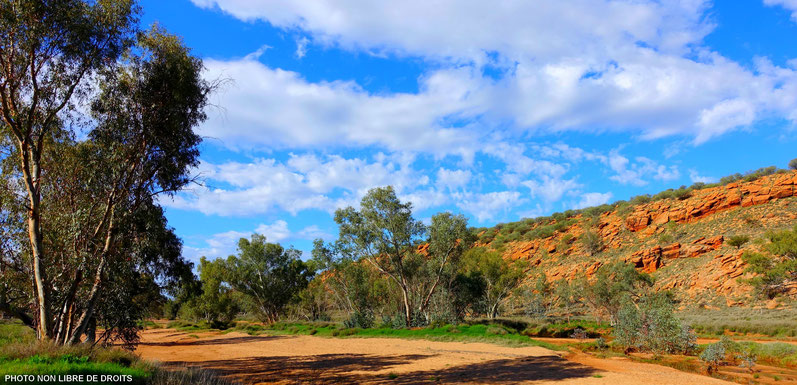 Balade à Alice Springs, Australie