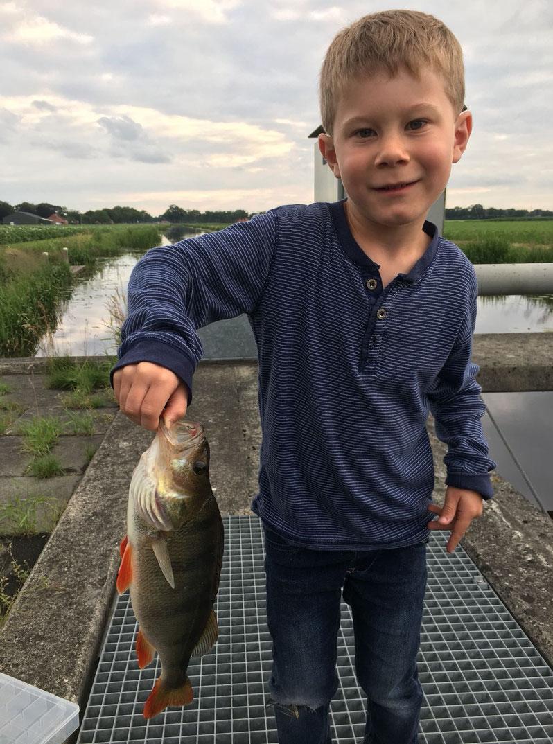 Sebastian's Sohn mit einem schönen Sommer-Barsch. Ein dickes Petri Heil zum tollen Fisch. Weiter so!!!