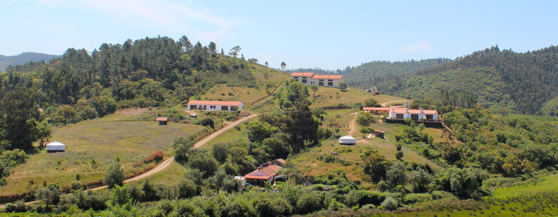 Driftwood Unterkunft in Portugal: Monte Vehlo