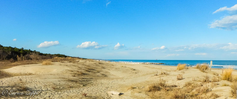 Dune e mare della spiaggia della Bassona a Lido di Classe.