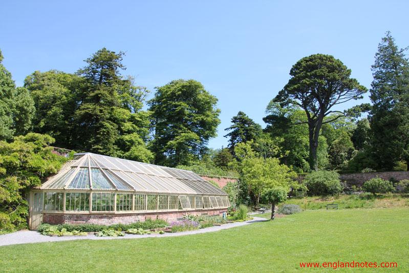 Blick auf das Gewächshaus und den Garten von Greenway, Devon, England