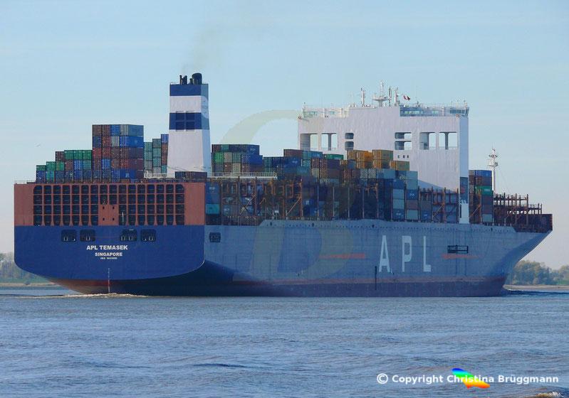 Containerschiff APL TEMASEK nach Verlängerung erstmals in Hamburg, Elbe 03.11.2018