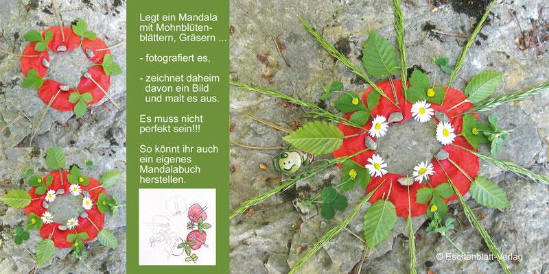 Mandala, Mohnblütenblätter,  Mandalabuch erstellen, zeichnen, malen, gestalten