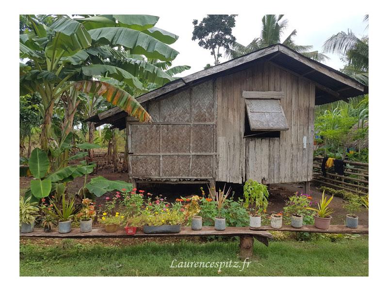• La coquette • Maison Philippine Ile de Siquijor
