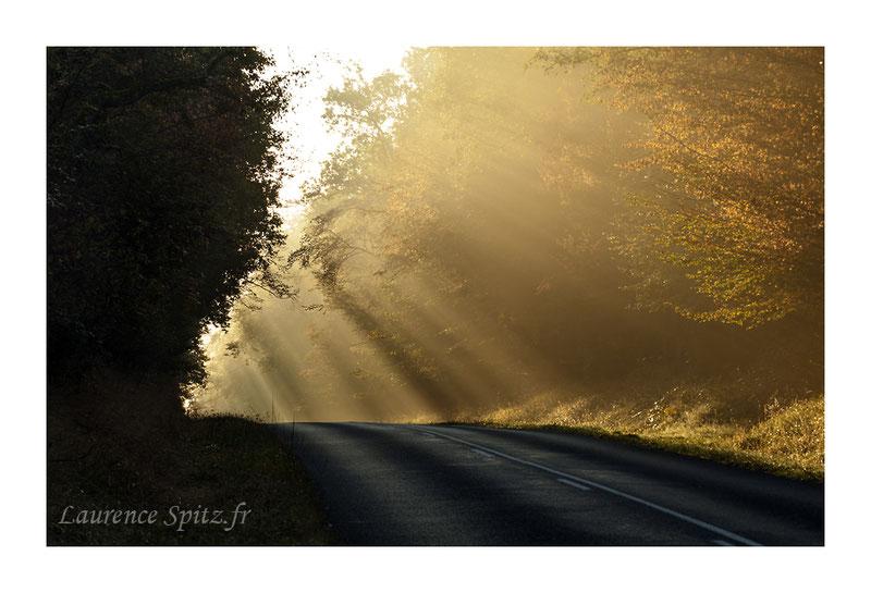 MG6342 • Sur la route •