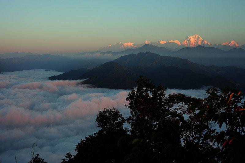 MG1569 • L'Annapurna au  lever du jour.
