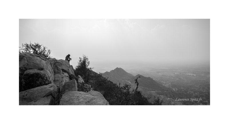 • Hanuman • Pushkar