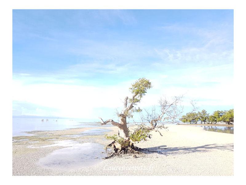 • Peinture à l'eau • Siquijor Island Philippines