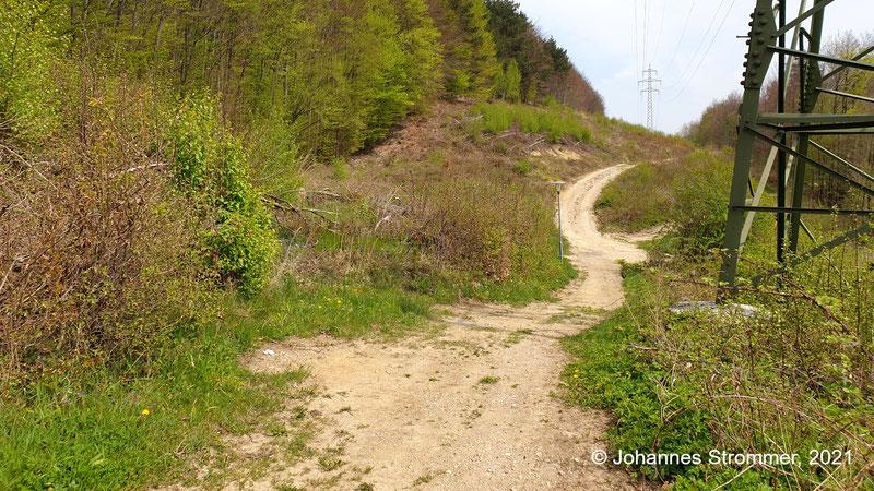 Knapp 600 m vom Bahnhof Rekawinkel entfernt bog die Waldbahn vom jetzigen Forstweg nach links ab, um ein kleines Tal auszufahren. Hier findet man noch Abdrücke von Schwellen. Blickrichtung Streckenende (Waldbahn Rekawinkel).