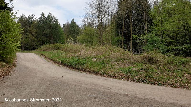 """Nach der Kreuzung mit der Straße zum """"Am Hagen"""" muss sich einmal ein ziemlich tiefer und langer Einschnitt befunden haben."""