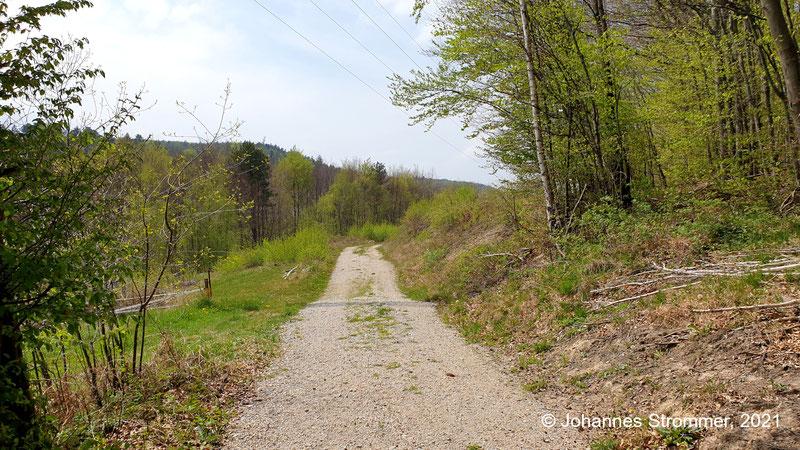 Im Jahr 2021,  also 6 Jahre später, ist der Wiesenweg aus der vorigen Abbildung leider verschwunden - er wurde durch eine Forststraße ersetzt (Waldbahn Rekawinkel)