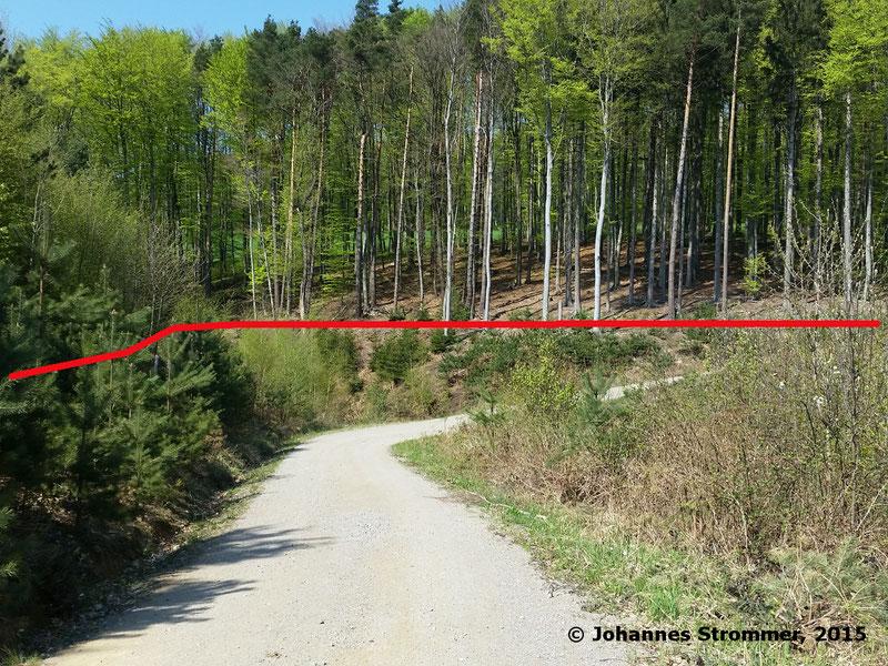 Abbildung 12: Die Trasse überquert einen Bach (Waldbahn Rekawinkel)