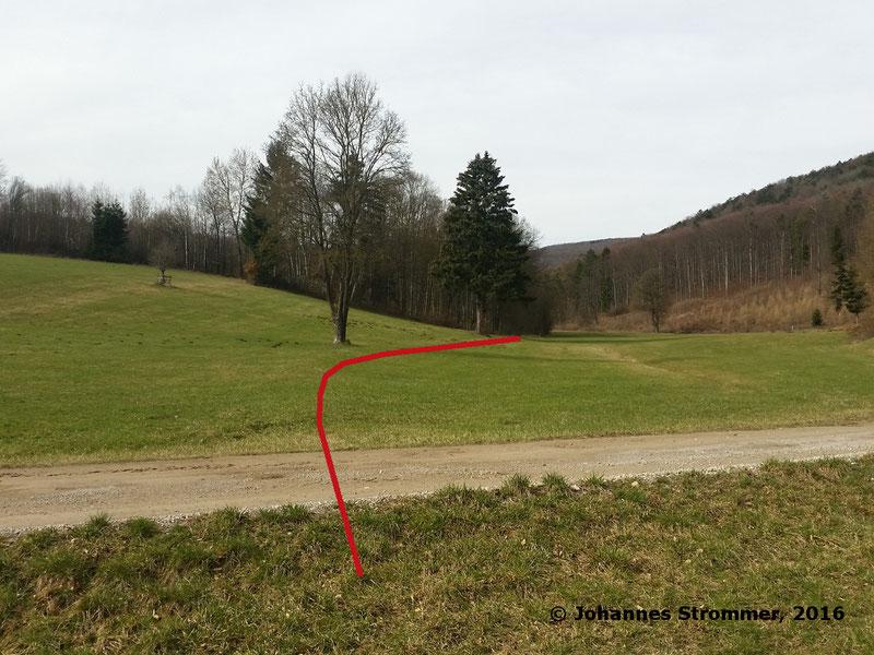 Waldbahn Haselbach: Die Trasse verläuft über eine Wiese, bei genauem Hinsehen ist der Bahndamm noch erkennbar. Blickrichtung Streckenende.