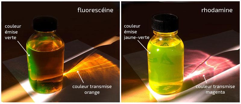 fluorescence : fluorescéine et rhodamine