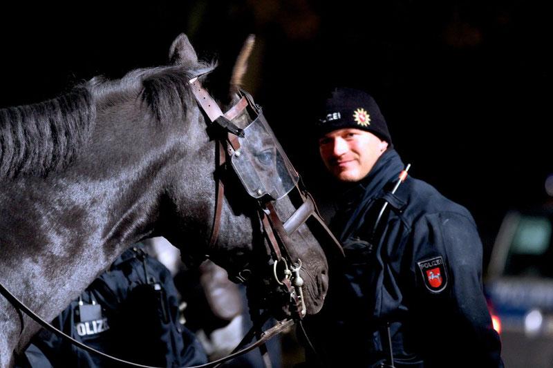 """""""Das Pferd- dein Freund und Helfer"""""""