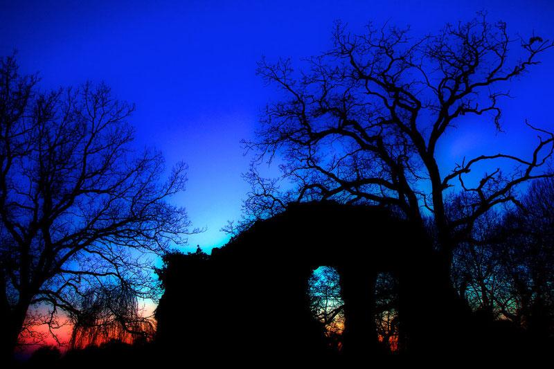 Blaue Stunde (Klosterruine Spithal bei Bergen/Dumme, Februar 2012)