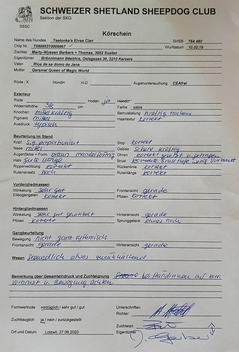Weitete Unterlagen unter Cian's Dokumenten (Stammbaum usw.)
