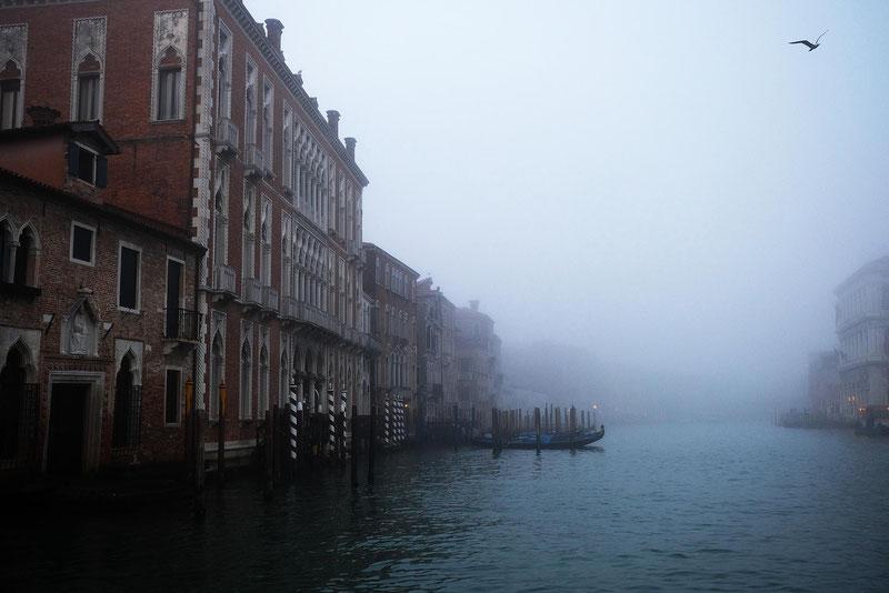 Mathieu Guillochon, photographe, Italie, Venise, grand canal, dorsoduro, brume, bleu, matin, voyages, couleurs, lagune, histoire, république de venise