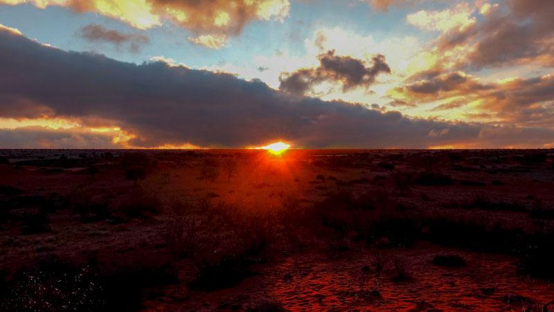 Soleil couchant dans le Kalahari, Namibie