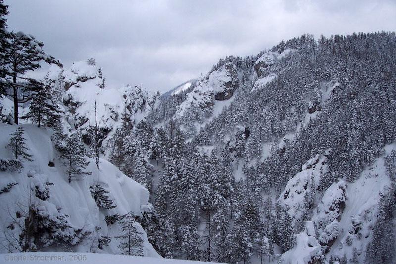 tief verschneite Erlaufmäuer im Februar 2006
