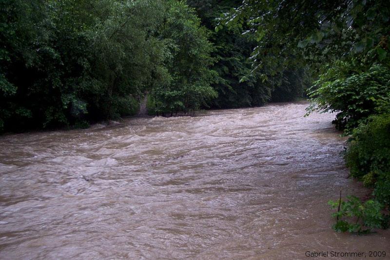 Hochwasser am Wienfluss in Niederösterreich