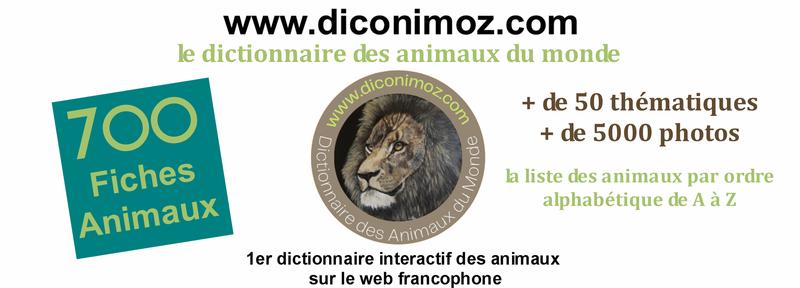 Dictionnaire des Animaux du Monde
