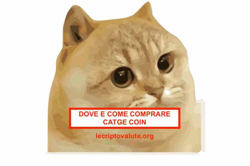 Dove e come comprare Catge coin Previsioni prezzo